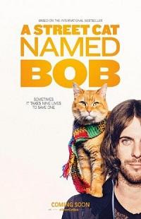 Ver Película Un gato callejero llamado Bob (2016)
