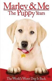 Ver Película Una pareja de tres: Los años cachorros (2011)