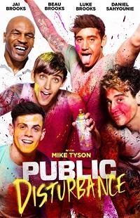 Ver Película Disturbio publico (2018)