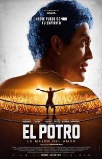 Ver Película El Potro: Lo mejor del amor (2018)