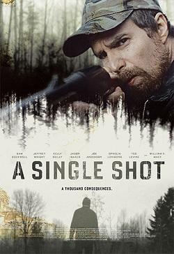 Ver Película Al primer disparo (2013)