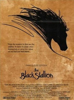 Ver Película El corcel negro (1979)