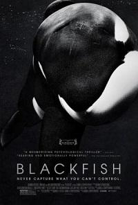 Ver Película Blackfish (2013)
