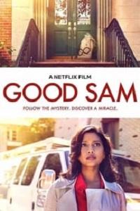 Ver Película El Buen Sam (2019)