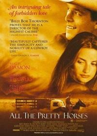 Ver Película Espíritu salvaje (2000)