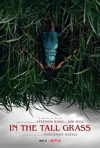 Ver Película En la hierba alta (2019)
