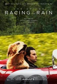 Ver Película Mi amigo Enzo (2019)