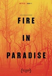 Ver Película Paradise en llamas (2019)