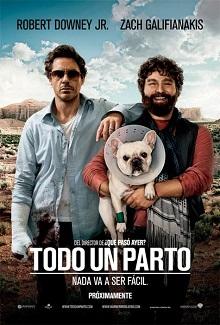 Ver Película Todo un parto (2010)