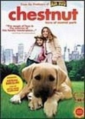 Chestnut El heroe de Central Park