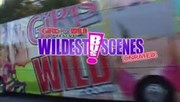 Girls Gone Wild Wildest Bus Scenes