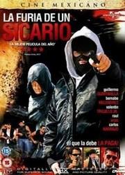 Ver Película La Furia de un Sicario (2013)