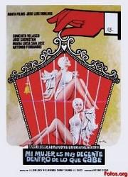 Ver Película Mi mujer es muy decente, dentro de lo que cabe (1975)
