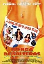Ver Película Juerga de solteros (2001)
