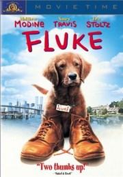 Ver Película Fluke (1995)