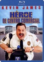 Ver Película Heroe De Centro Comercial (2009)