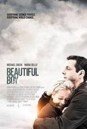 Ver Película Mi Querido Niño (2010)
