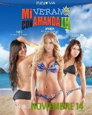 Ver Pel�cula Mi verano con Amanda 3 (2013)