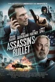 Ver Pel�cula La Bala del Asesino (2012)
