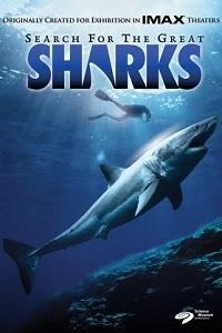 Tiburones: Leyenda del Mar
