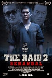 Ver Película La Redada 2 (2014)