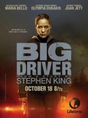 Ver Pel�cula Big Driver (2014)