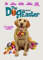 El Perro Que Salvo Las Pascuas