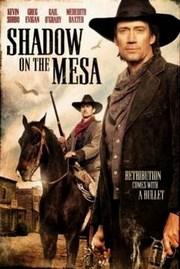Ver Película Una Amenaza en la Sombra (2013)