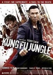 Ver Película Asesino Kung Fu (2014)