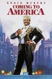 Ver Película Un principe en Nueva York  (1988)